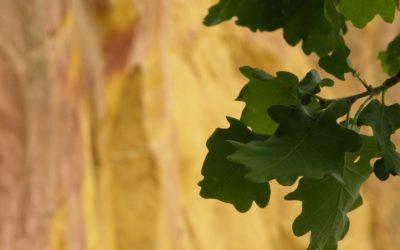 Roussillon – 50 sfumature d'ocra