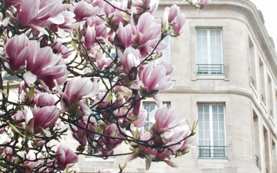 Parigi in primavera, i posti piu' instagrammabili
